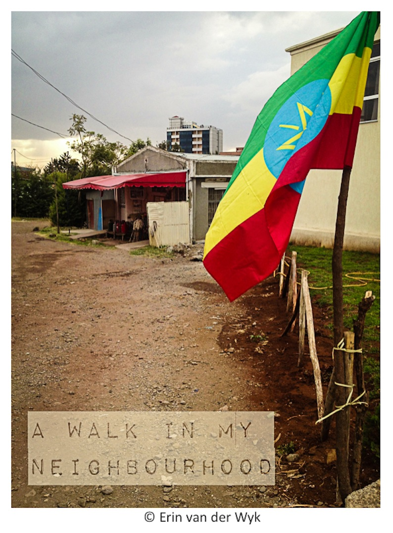 Addis Walk Cover