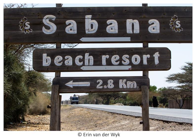 Sabana 6