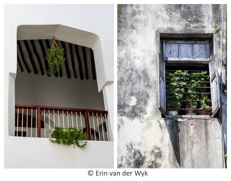 Zanzibar Windows