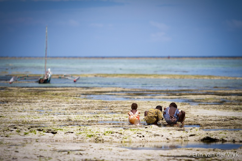 Zanzibar_2012-1003