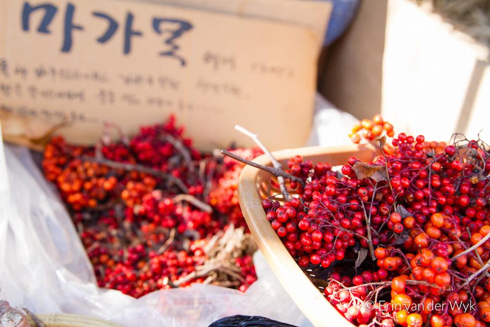 20151031-South Korea-Juwangsan-180